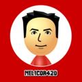 Freelancer Nelson L.