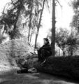 Freelancer Italo A. d. l. V. M.