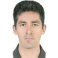 Freelancer Carlos M. N. M.