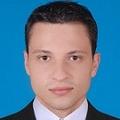 Freelancer Luis N.