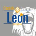 Freelancer Camilo L.