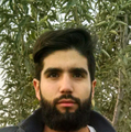 Freelancer Patricio I. I. R.