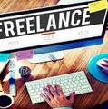 Freelancer David g. d. s.
