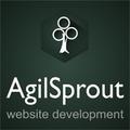 Freelancer AgilSp.