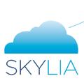 Freelancer Skylia