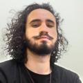 Freelancer Vinicius R. O. F.