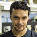 Freelancer Luis I. R. A.
