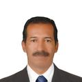 Freelancer CARLOS A. L. R.