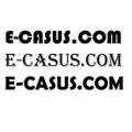 Freelancer Casus T.