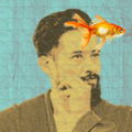 Freelancer Rage S.