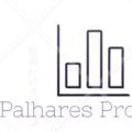 Freelancer Palhares P.