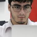 Freelancer Nicolau A. P.