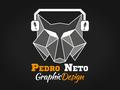 Freelancer Pedro B. N.