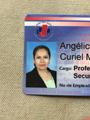 Freelancer Angie