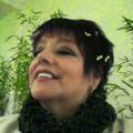 Freelancer Rosa E. Q. N.