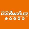 Freelancer Grupo P. C.