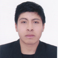 Freelancer Osmar D. L. C.