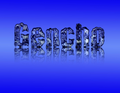 Freelancer Argenis C.