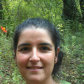 Freelancer MARIA D. P. O. Z.