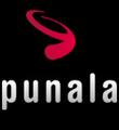 Freelancer Punala P.