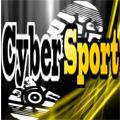 Freelancer Cyber S.