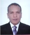 Freelancer Pedro A. D. P.