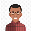 Freelancer Paulo H. G. d. P.