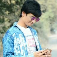 Freelancer Vishal P.
