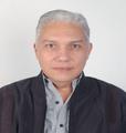 Freelancer Silvestre N.