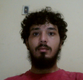 Freelancer Yuri T. P. N.