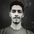 Freelancer Wesley L. R.