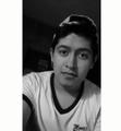 Freelancer Javier A. H. O.