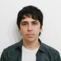 Freelancer Rodrigo L. P.
