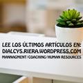 Freelancer Dialcys R.