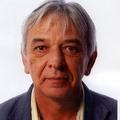 Freelancer Javier E.