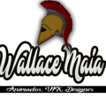Freelancer Wallace M.
