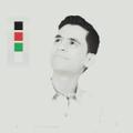 Freelancer Hamza A. E.