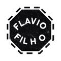 Freelancer Flavio F.