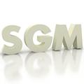 Freelancer SGM