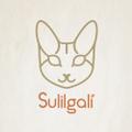 Freelancer Sulilg.