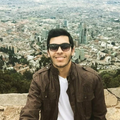 Freelancer Alfredo Guida