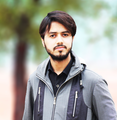 Freelancer Rizwan A.