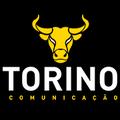 Freelancer Torino C.