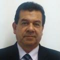 Freelancer Nelson Y. R. C.