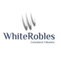 Freelancer WhiteRobles C.