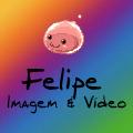 Freelancer Felipe N. T.