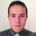 Freelancer SERGIO D. P. D.