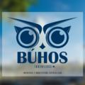 Freelancer Búhos I.