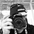 Freelancer Felipe T. C.