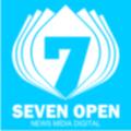 Freelancer Seven O.